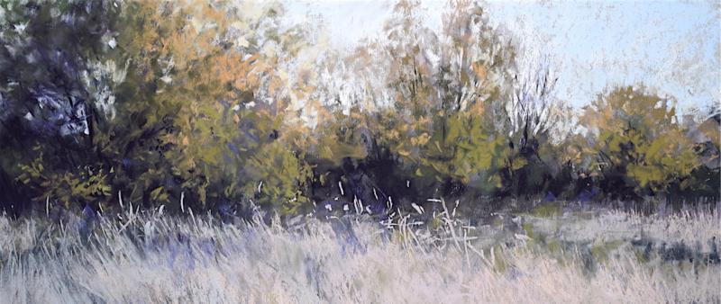 After Work: Laubbäume in Pastell